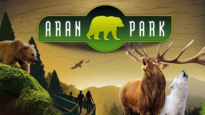 Traslado a Aran Park